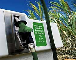 بررسی بیودیزل به عنوان سوخت خودرو